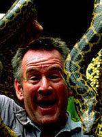 《与蛇共舞》