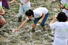 光脚踩淤泥  放手卖力种树苗