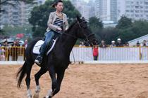 马秀&Pony小马骑乘&马术课堂