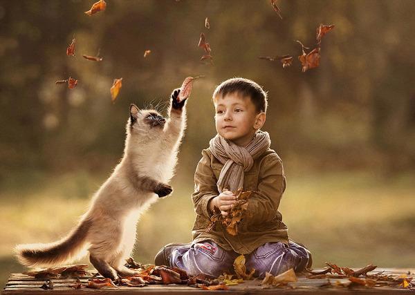 她拍摄的动物和宝宝的有爱互动照片画面唯美动人,让人惊叹.