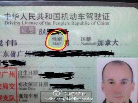 老外称中国驾照多处翻译错误