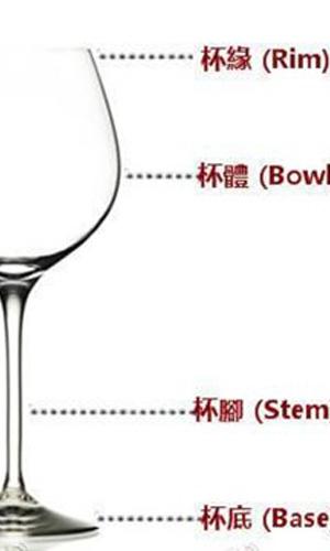 葡萄酒杯的基本结构