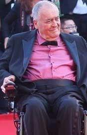 评审团主席贝托鲁奇轮椅亮相