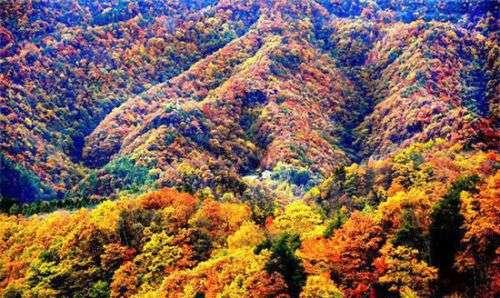细数10月中国最美的十个地方 记录金秋斑斓色彩