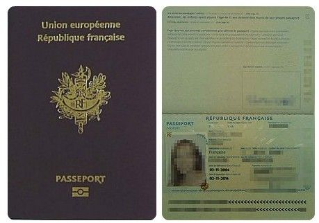 """各国护照""""能力值"""":丹麦居首阿富汗垫底图片"""