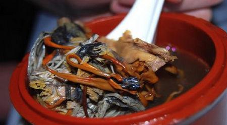 日本十道最恶心的菜