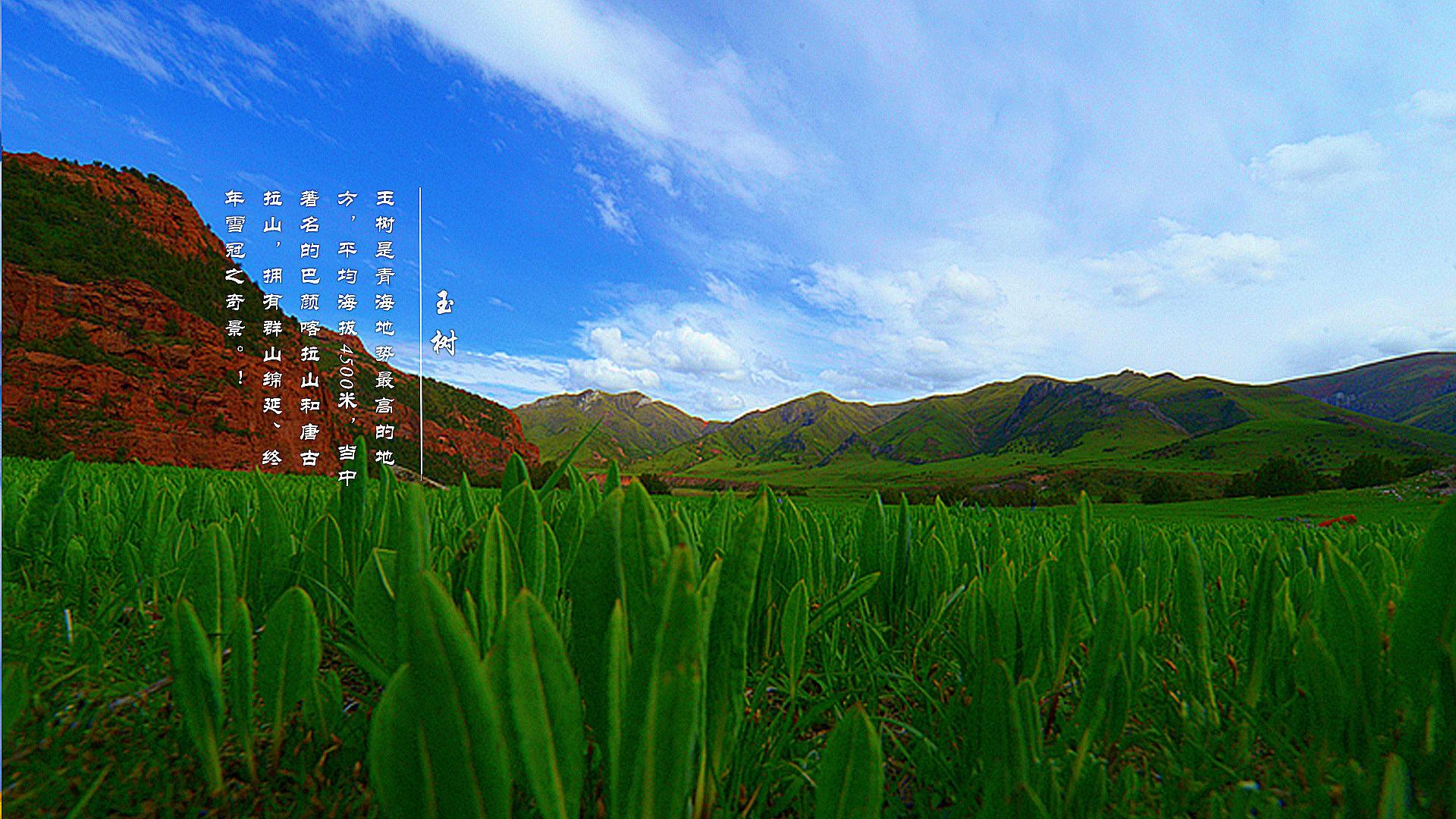 青藏高原歌谱 青藏高原地形 青藏高原地形