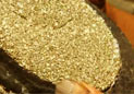 长满黄金的石头