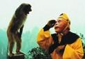 猴子向六小龄童敬礼
