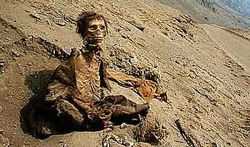 大地震送瑰宝:智利学生在狗屎堆下挖出7千年木乃伊