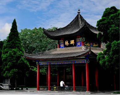 碑林博物馆获全省古籍保护先进单位
