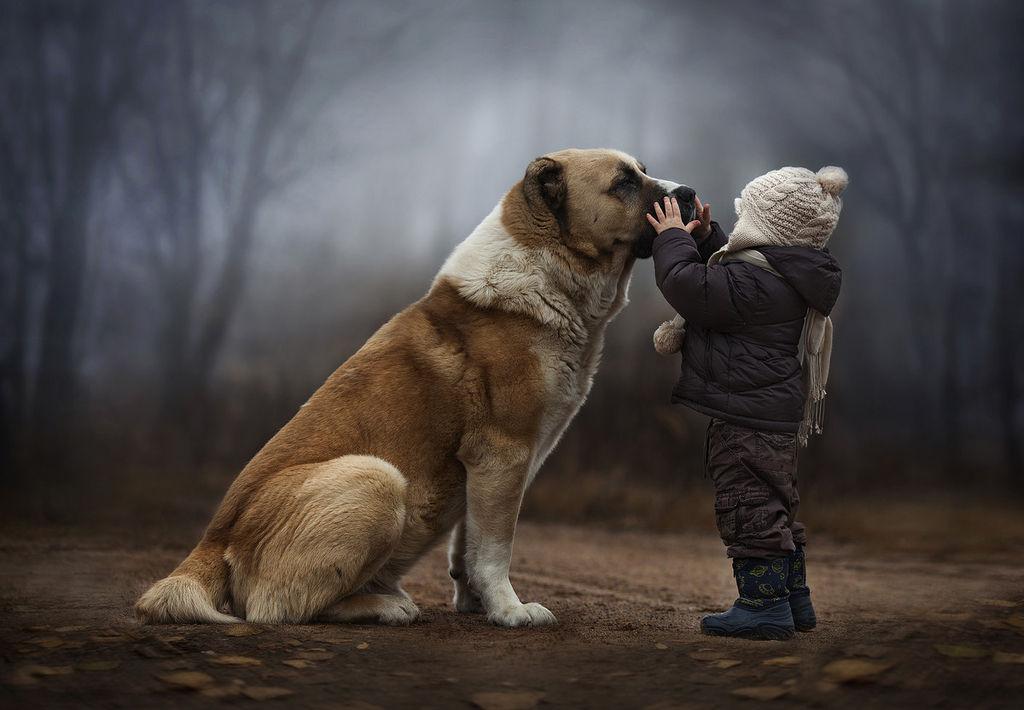 女摄影师拍摄儿子与动物亲密照