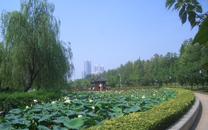 武汉建毛泽东畅游长江文化园