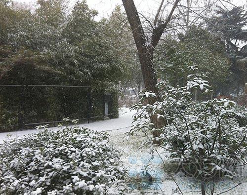 瑞雪兆丰年 郑州碧沙岗公园春节游园欢乐多(图)