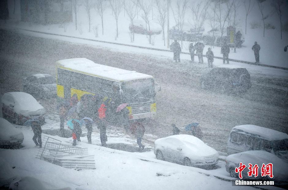 乌鲁木齐今日下大雪 昨日最高温24℃(组图)