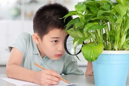 教育男孩的十三个关键问题