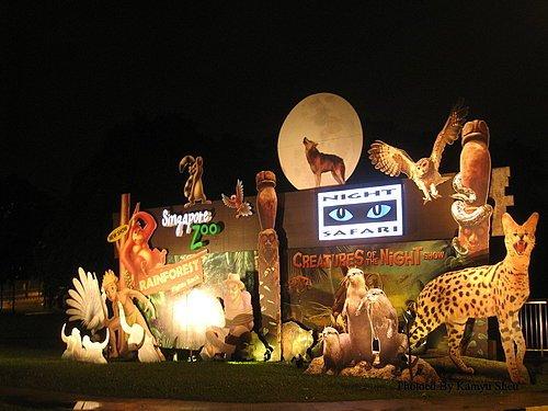 别样之旅 新加坡夜间野生动物园