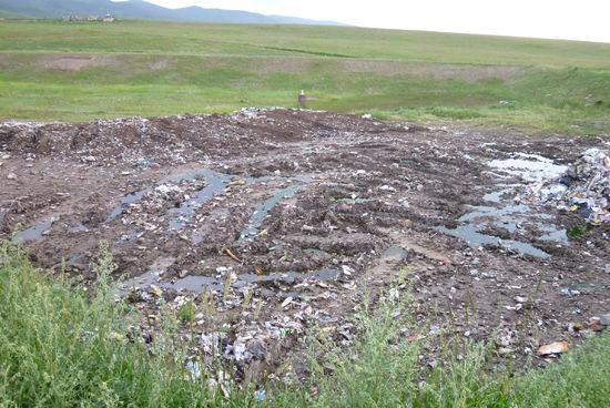 青海湖周边私人景点成垃圾制造大户 图