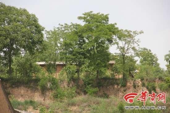 彬县有多少人口_彬县发生刑事案件一家五口和女邻居共6人遇难