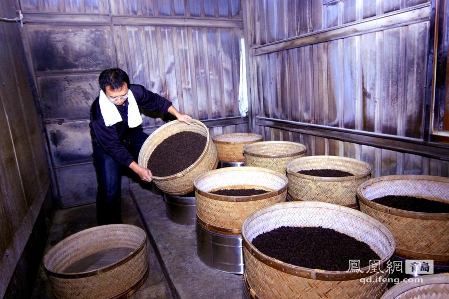 台湾乌龙茶——幸福茶制作过程