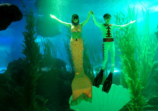青岛海底世界美人鱼_漂亮的美人鱼,潇洒的王子,美丽无比的海神宫……5日上午,青岛海底世界