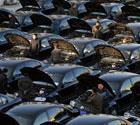 2012全国两会用车体检