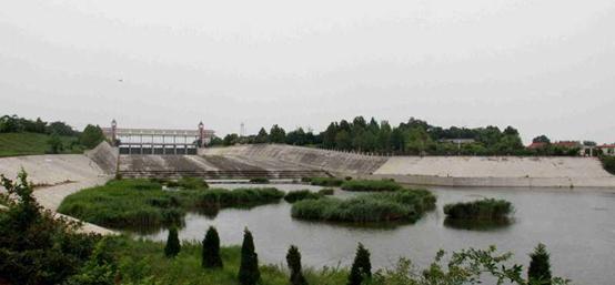 大沽河美景