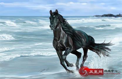 壁纸 动物 马 骑马 416_268