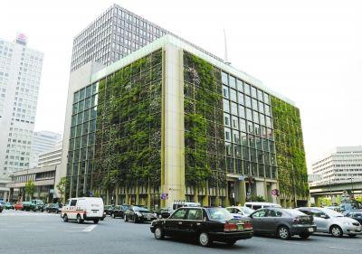 """日本东京办公楼外墙上的""""绿色窗帘"""""""