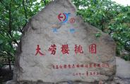 大崂红樱生态园
