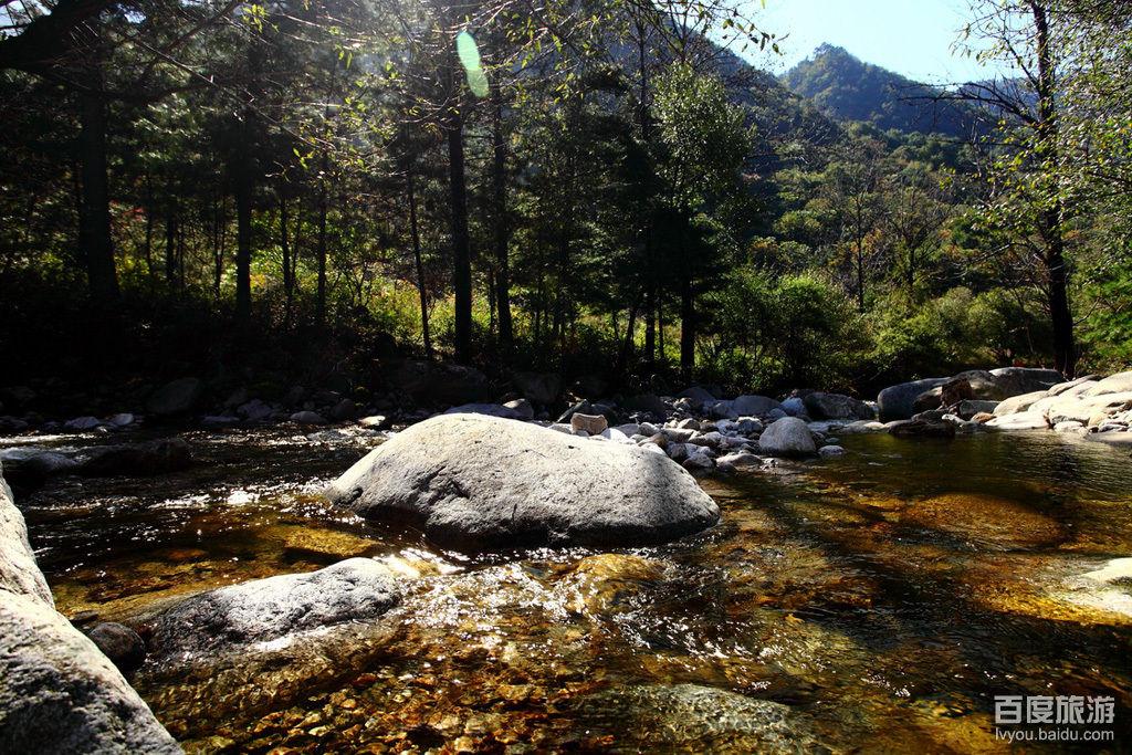 走进陕西-——朱雀国家森林公园