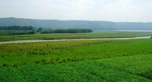 ... 凤翔千湖湿地公园内容 陕西凤翔千湖湿地公园图片