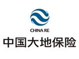 中国大地保险