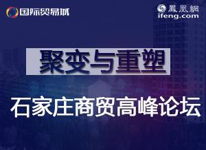 聚变与重塑 石家庄商贸高峰论坛