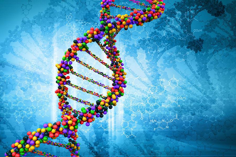 性学习理论则主张,童年早期的同性恋体验或幻想不仅未受到抑制,反而通过性行为和手淫得到强化,促进了同性别的性取向,而遗传学研究并未能发现决定性取向的基因标记。