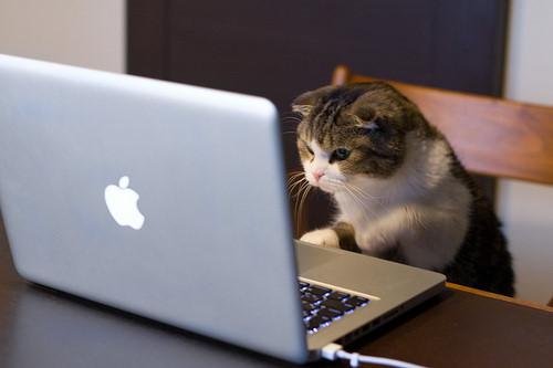 莫言:人一上网就变得厚颜无耻