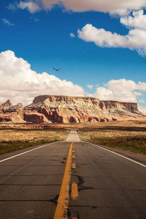 美国一号公路自驾全攻略图片