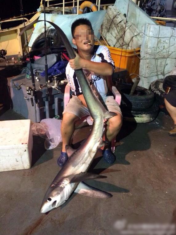 网友在微博发布照片,称多人在西沙组团海钓,猎捕濒危动物长尾