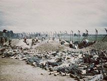 德军集中营:头发牙齿被细细分拣