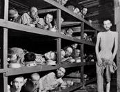 纳粹集中营地痞流氓接任监工 要求每天至少杀600人