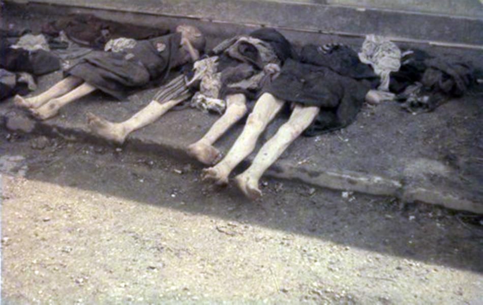奥斯维辛集中营解放70周年祭:欢乐的看守与尸