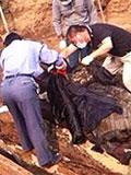东北300年前女干尸复活:棺木里满是抓痕