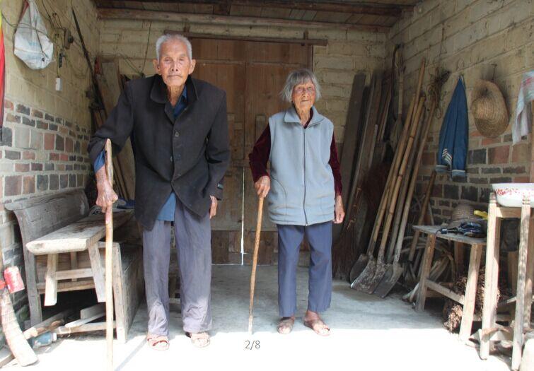 111岁老太和105岁老翁的情人节