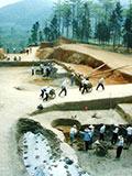 河南春秋巨墓挖掘现场:伸手一捞玉戈在手