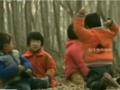 3岁男童被人贩子抢走 大喊让6岁哥哥快跑