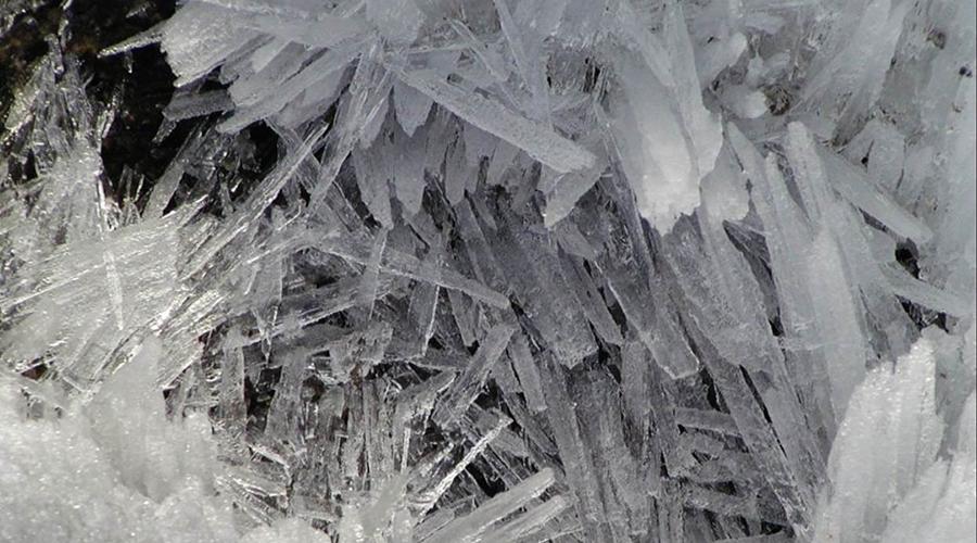 但冻卵细胞相对于冷冻精子细胞和其他的体细胞而言,仍有相当的难度,主要就在于卵细胞是人体内最大的细胞,含有大量的水分,冷冻过程中水分易结成冰晶,稍有不慎就会破坏细胞内部结构,导致卵母细胞丧失生殖能力。