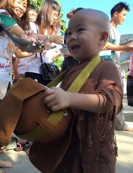 泰国两岁半小和尚走红 - 满山红叶 - 满山红叶博客