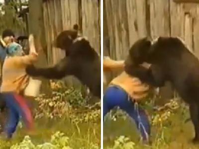 实拍女子徒手喂熊 饿熊一把将其按在身下