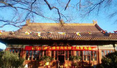 藏传佛教活佛查询系统上线 首批可查870名活佛