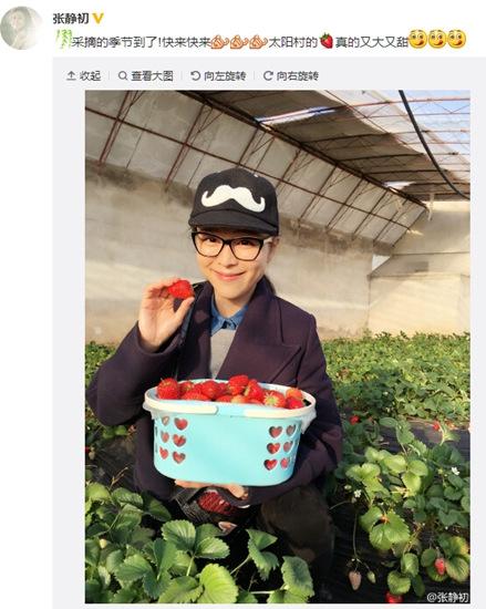 [明星爆料]张静初晒照收获满满 人比草莓更甜(图)